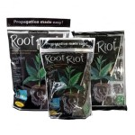 ROOT RIOT, KOSTKI DO WYSIEWU 100szt. - GROWTH TECHNOLOGY
